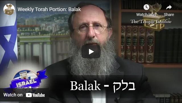 balak_1